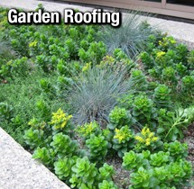Green from Roof to Floor